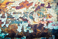 Bezszwowa tekstura ośniedziały barwiony szorstki, rocznika tło Obraz Royalty Free