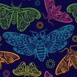 Bezszwowa tekstura z kolorowymi ornamentami motyle ilustracji