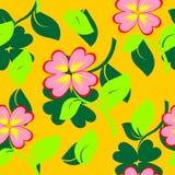 Bezszwowa tekstura z kwiatami i zielonym płatkiem. Vec Obraz Royalty Free