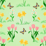 Bezszwowa tekstury wiosna kwitnie z motylim wektorem Obraz Stock