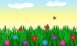 Bezszwowa trawa z kwiatami Zdjęcia Stock