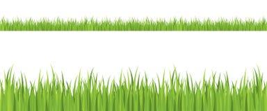 bezszwowa trawy ilustracja ilustracja wektor