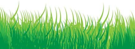 Bezszwowa trawy tła zieleń Zdjęcia Royalty Free