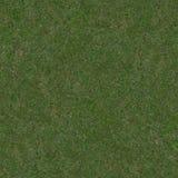 bezszwowa trawy tekstura zdjęcia stock