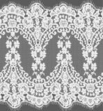 Bezszwowa Wektorowa biel koronka Fotografia Royalty Free