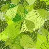 Bezszwowa zieleń opuszcza tło Zdjęcia Stock