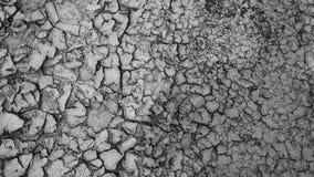 Bezszwowa ziemi powierzchnia zdjęcie wideo