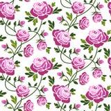bezszwowe deseniowe róże Obrazy Royalty Free