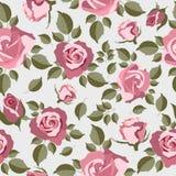 bezszwowe deseniowe różowe róże Zdjęcia Stock