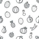 Bezszwowe Kreskowej sztuki owocowe ikony ustawiają płaskiego projekta tła wektoru przejrzystą ilustrację Zdjęcie Royalty Free