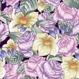 bezszwowe kwieciste deseniowe róże Fotografia Royalty Free