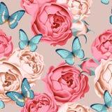 Bezszwowe peoni róże, motyl i Zdjęcie Stock