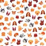 Bezszwowe pies twarze Śmieszna psia twarz, szczeniaka zwierzęcia domowego głowa i zwierzę grupy tła wektorowy wzór, royalty ilustracja
