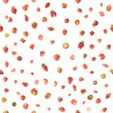 Bezszwowe truskawki Obrazy Royalty Free