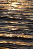 Bezszwowego tekstura Ciepłego koloru zmierzchu wody Olśniewająca powierzchnia Fotografia Stock