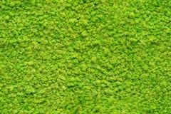 Bezszwowego zakończenia mech up zielona tekstura Fotografia Stock