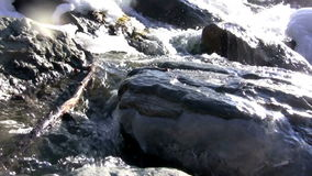 (Bezszwowej pętli) zimy zatoczki Zadziwiający widok zdjęcie wideo