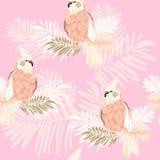 Bezszwowej tekstury abstrakcjonistyczne papugi w paprociowych liściach royalty ilustracja