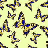 Bezszwowej tekstury Inachis io Motyli wektor Fotografia Stock