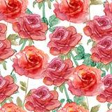 Róża wzór Obrazy Stock