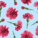 Bezszwowi deseniowi goździków kwiaty Fotografia Stock