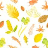 Bezszwowi deseniowi liście, ziele jesień wektorowy akwareli illustr Zdjęcia Stock