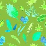 Bezszwowi deseniowi liście, ziele lato wektorowy akwareli illustr Obrazy Royalty Free