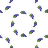 Bezszwowi deseniowi tło winogrona wektor Obraz Stock