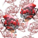 Bezszwowi deseniowi tulipany Obraz Royalty Free