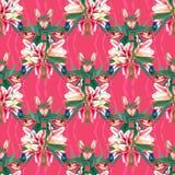 Bezszwowi deseniowi tulipany i hummingbirds Fotografia Stock