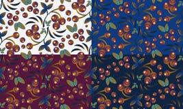 Bezszwowi jagoda wzory z wiązką rowan Obrazy Stock