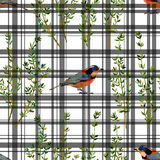 Bezszwowi kwieciści deseniowi ziele i ptaki Obrazy Royalty Free