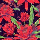 Bezszwowi tło kwiaty, hummingbirds i ilustracja wektor