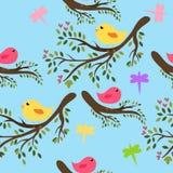 bezszwowi tło ptaki ilustracja wektor