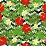 Bezszwowi tropikalni liście i kwiaty Obraz Royalty Free