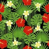 Bezszwowi tropikalni liście i kwiaty Fotografia Stock