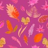 Bezszwowi wzorów liście, ziele na menchiach wektorowy akwareli illust Obrazy Stock