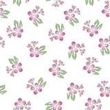 Bezszwowi wzory z akwarela kwiatami Zdjęcia Royalty Free