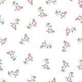 Bezszwowi wzory z akwarela kwiatami Fotografia Royalty Free