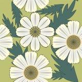 Bezszwowy śliczny kwiecisty wzór z jaskrawymi chamomiles ilustracji