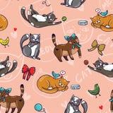Bezszwowy śmieszny wektoru wzór z ślicznymi kotami w kreskówka stylu Fotografia Stock