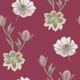 Bezszwowy akwarela kwiat?w wz?r R?ka maluj?ca kwitnie na bia?ym tle Kwiaty dla projekta Ornament?w kwiaty Bezszwowy bo ilustracji