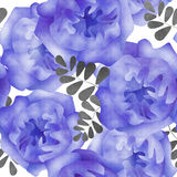 Bezszwowy akwarela kwiatów wzoru tło Zdjęcia Royalty Free