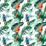 Bezszwowy akwarela wzór tropikalni liście, zwarta dżungla Brzęczenia Zdjęcie Royalty Free