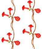Bezszwowy akwarela wzór z czerwonymi kwiatami Zdjęcia Royalty Free