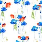 Błękitny i czerwony maczek Obrazy Royalty Free