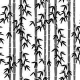 Bezszwowy bambusowy tapeta wzór Zdjęcia Stock