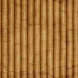 Bezszwowy bambusowy texure Fotografia Stock