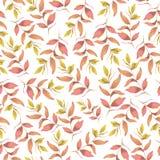 Bezszwowy botaniczny różowy koloru żółtego wzór Cyfrowej ilustracja ilustracja wektor