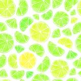 bezszwowy citrus wzoru obraz royalty free